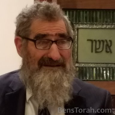 Pesachim 88 - Chiddushei R' Chaim Halevy Chapter 5 Halacha 7
