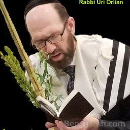 Rabbi Uri Orlian
