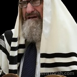 Rabbi Yehoshua Kalish